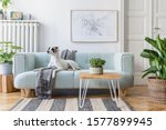 Small photo of Stylish scandinavian living room interior of modern apartment with mint sofa, design coffee table, furnitures, plants and elegant accessories. Beautiful dog lying on the couch. Home decor. Template.