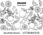 Orange Hand Drawn Package...