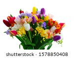 Bouquet Of Tulips And Freesias...