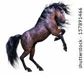 A Mahogany Bay Stallion Horse...