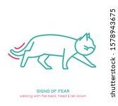 cat fearful behavior signal.... | Shutterstock .eps vector #1578943675
