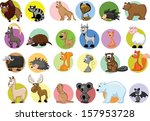 set of cartoon animals   Shutterstock .eps vector #157953728