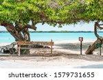 Isabela  Galapagos Islands ...