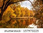 Autumn Landscape. Autumn Trees...
