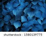 Trend Color 2020 Classic Blue ...