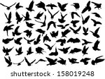 set of 60 silhouettes of birds | Shutterstock .eps vector #158019248