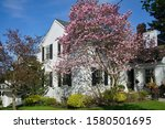 White Painted Brick House With...