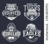 vintage monochrome sport teams... | Shutterstock .eps vector #1581803992