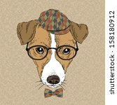 animal,argyle pattern,art,beautiful,bow,boy,breed,cap,card,cartoon,child,cool,cute,decorative,design