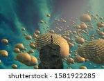 Seashell. Human Standing On An...