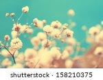 vintage lovely small white... | Shutterstock . vector #158210375