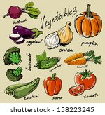 hand drawn fresh color... | Shutterstock .eps vector #158223245