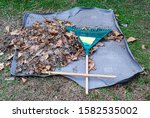 Small photo of Leaf raking is postponed due to broken rake handle. Frustration and humor.