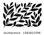 brush branches with long leaves ... | Shutterstock .eps vector #1582821598