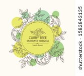 background with curry tree ...   Shutterstock .eps vector #1582843135
