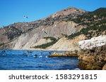 Mature Mountain. Rock Outlier...