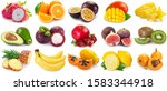 collection of fresh fruits... | Shutterstock . vector #1583344918
