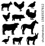 farm animals and poultry birds... | Shutterstock .eps vector #1583537812