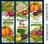 vegetables and farm products... | Shutterstock .eps vector #1583537878