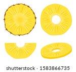 pineapple vector slice fruit... | Shutterstock .eps vector #1583866735