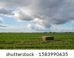 Large Hay Square Bail In A...