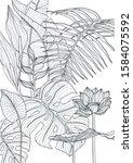 tropical plants flowers leaves... | Shutterstock . vector #1584075592