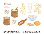 oats set. bag of oat flour ... | Shutterstock .eps vector #1584278275