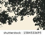 tree and branches silhouette.... | Shutterstock .eps vector #1584533695