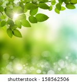 natural green background with... | Shutterstock . vector #158562506