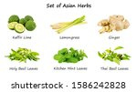set of asian herbs on white... | Shutterstock . vector #1586242828