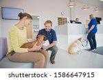 Pet Dog Owner In Vet Surgery...