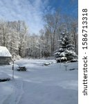 Backyard Winter Scene After Ne...