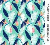 bird of paradise tropical... | Shutterstock .eps vector #1586968972