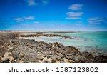 Stromatolites In Western...
