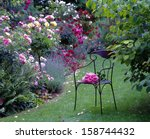 Stock photo modern chair in the rose garden 158744432