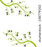 olive branch with olives on a... | Shutterstock .eps vector #158779202
