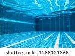 The Underwater Image Of The...