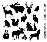 Handdrawn Forest Animals...