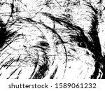 ink lines texture. background... | Shutterstock .eps vector #1589061232