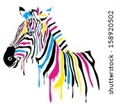 Zebra With Colored Stripes
