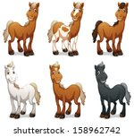Stock vector illustration of the six smiling horses on a white background 158962742