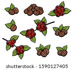coffee beans set. collection... | Shutterstock .eps vector #1590127405