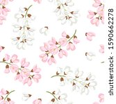 acacia flowers seamless pattern.... | Shutterstock .eps vector #1590662278