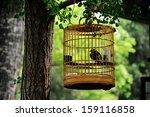 A Chinese Style Bird Cage...