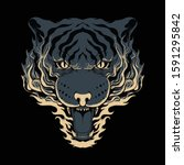 Animal Tiger Fire Roar Angry...