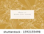 vintage card with lily flowers. ... | Shutterstock .eps vector #1592155498