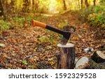 Firewood  Sharp Ax Sticking Ou...