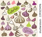 set simple sketch icons garlic... | Shutterstock .eps vector #159325496