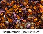 Dry Colorful Flower Petals Fla...