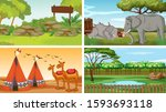 four scenes with animals in the ...   Shutterstock .eps vector #1593693118
